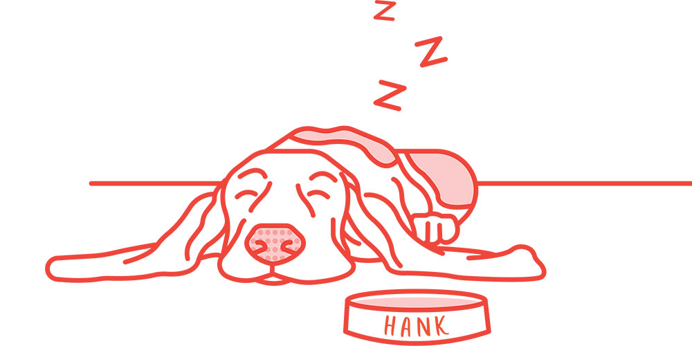 Sleepy Hank of DN3 Design
